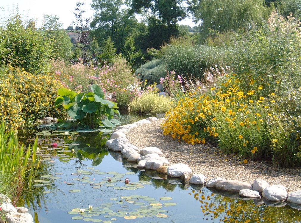 Pr sentation le parc des jardins aquatiques for Jardin aquatique
