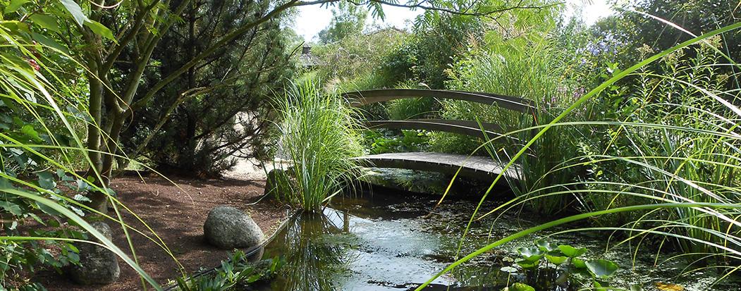 Le Parc des Jardins Aquatiques à St Didier sur Chalaronne (01)