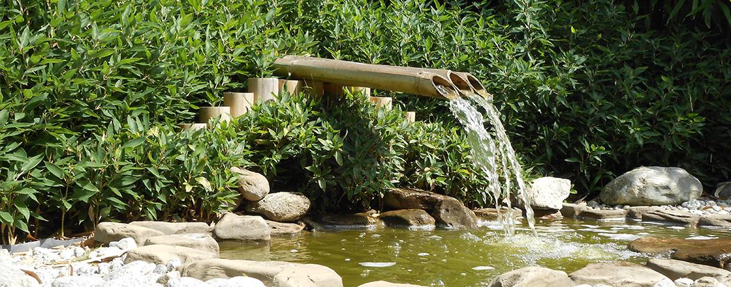 Le parc des jardins aquatiques st didier sur chalaronne 01 for Jardin aquatique